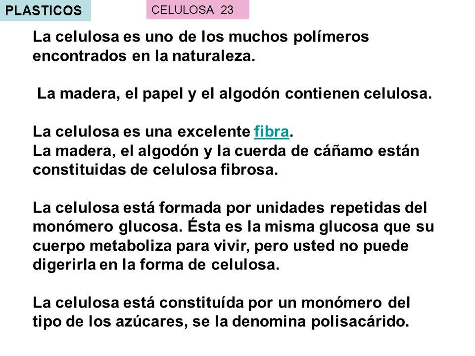 La madera, el papel y el algodón contienen celulosa.