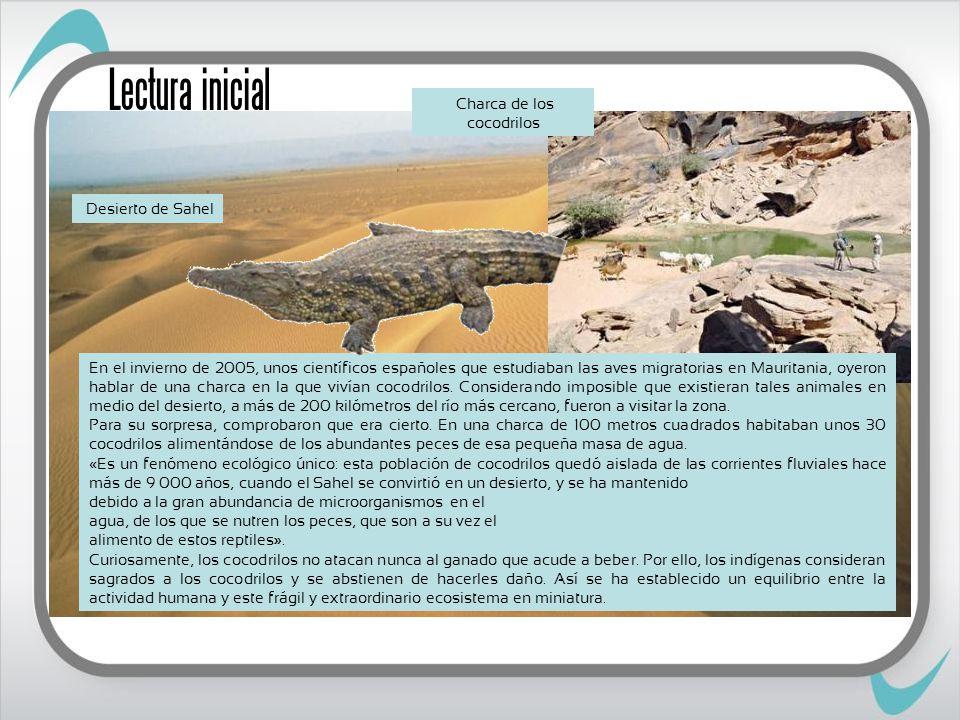 Charca de los cocodrilos
