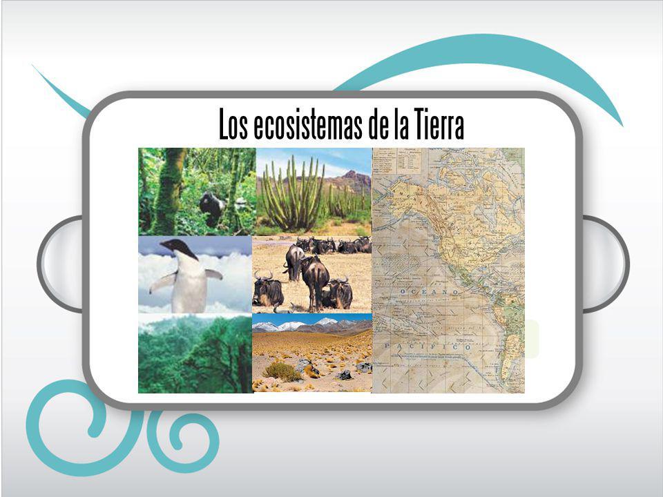 Los ecosistemas de la Tierra