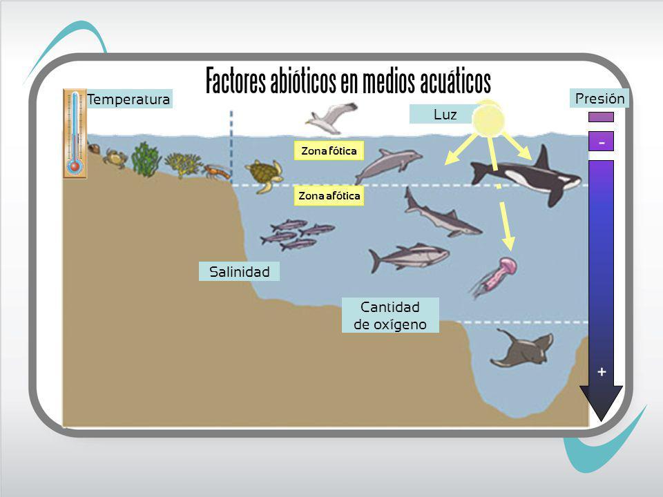 Factores abióticos en medios acuáticos