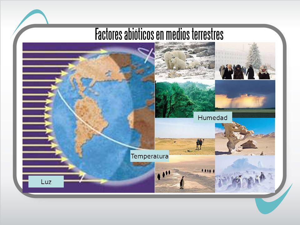 Factores abióticos en medios terrestres