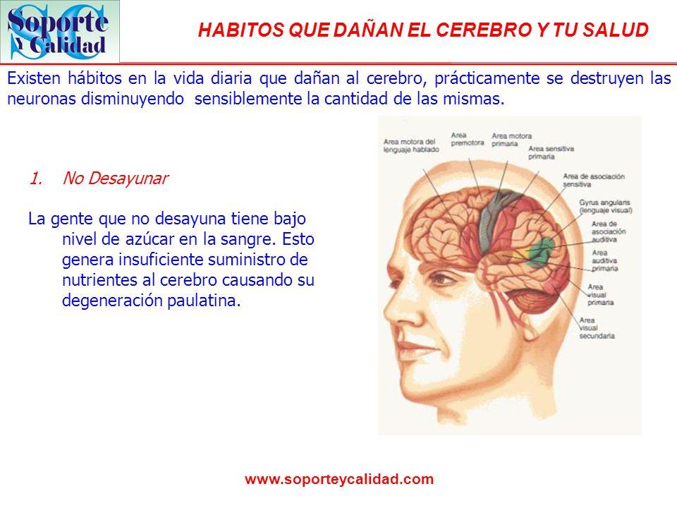 Existen hábitos en la vida diaria que dañan al cerebro, prácticamente se destruyen las neuronas disminuyendo sensiblemente la cantidad de las mismas.