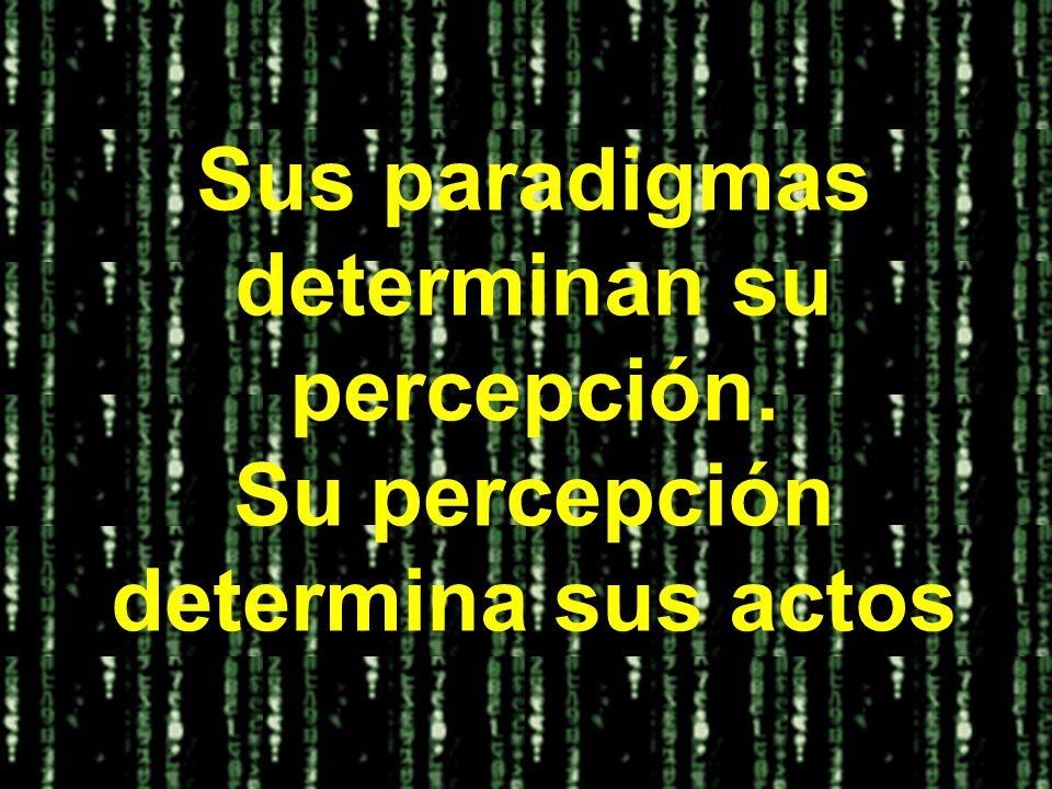 Sus paradigmas determinan su percepción.