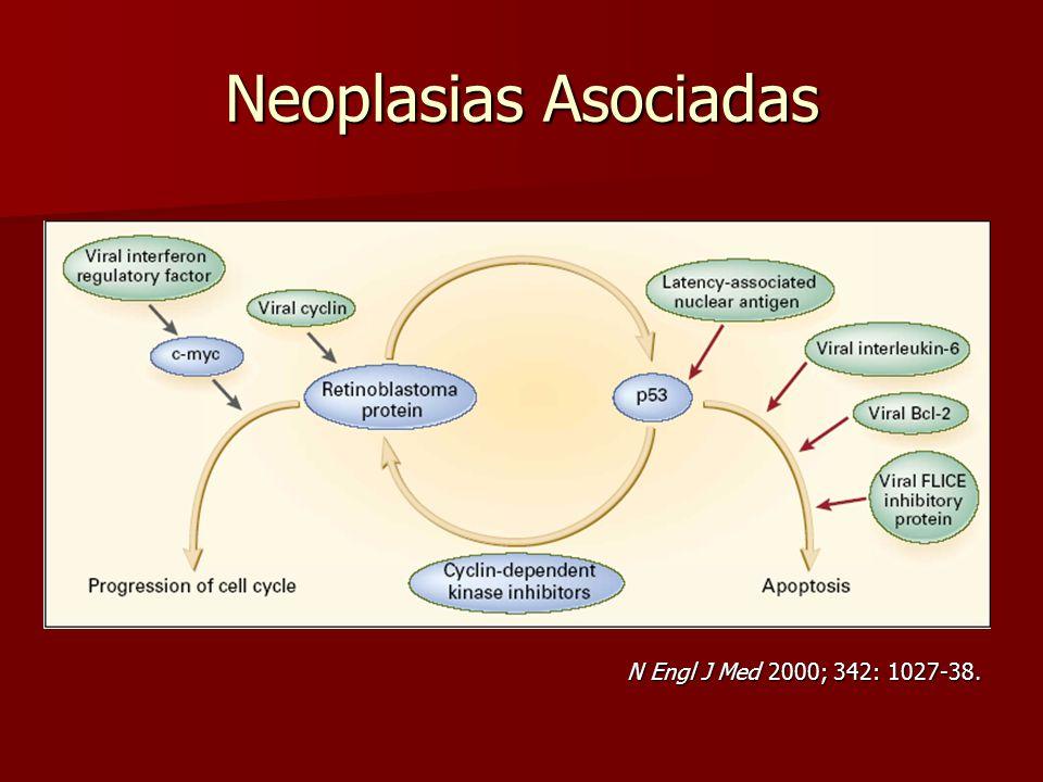 Neoplasias Asociadas N Engl J Med 2000; 342: 1027-38.