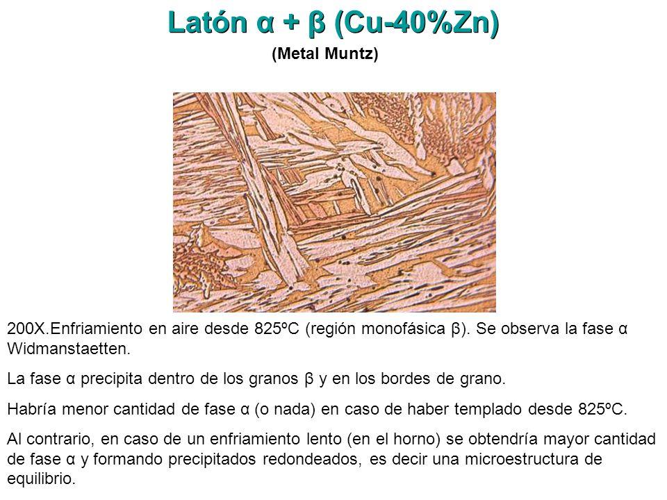 Latón α + β (Cu-40%Zn) (Metal Muntz)