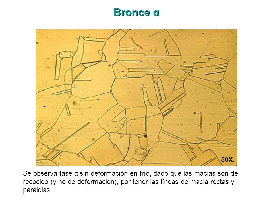 Bronce α 50X.