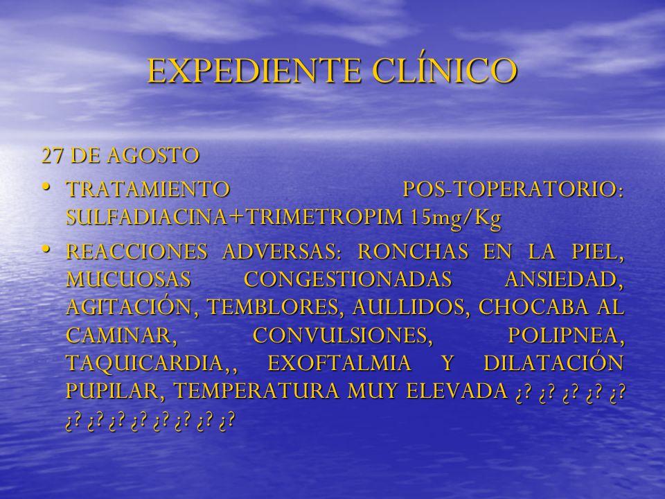 EXPEDIENTE CLÍNICO 27 DE AGOSTO