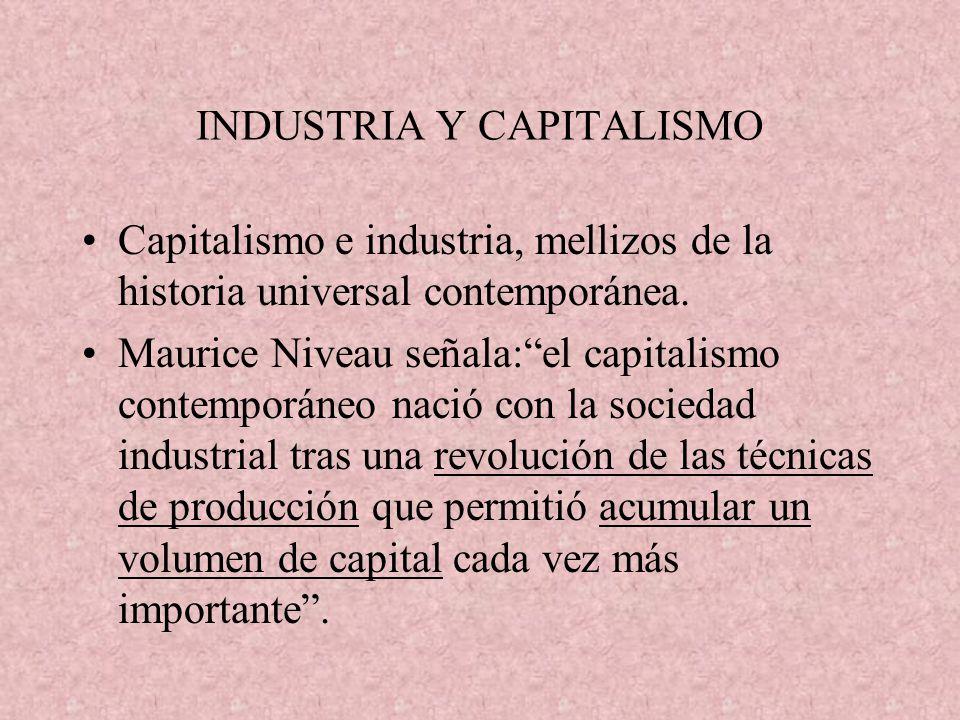 INDUSTRIA Y CAPITALISMO