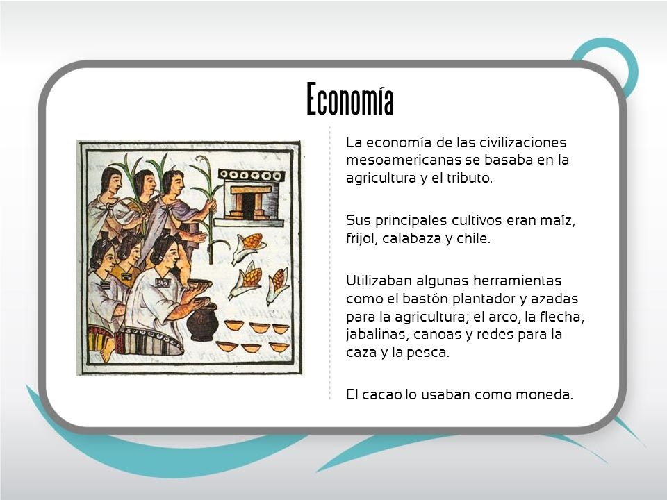 Economía La economía de las civilizaciones mesoamericanas se basaba en la agricultura y el tributo.