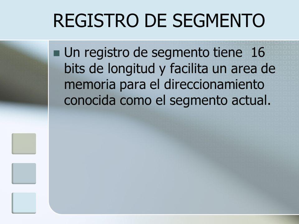 REGISTRO DE SEGMENTO