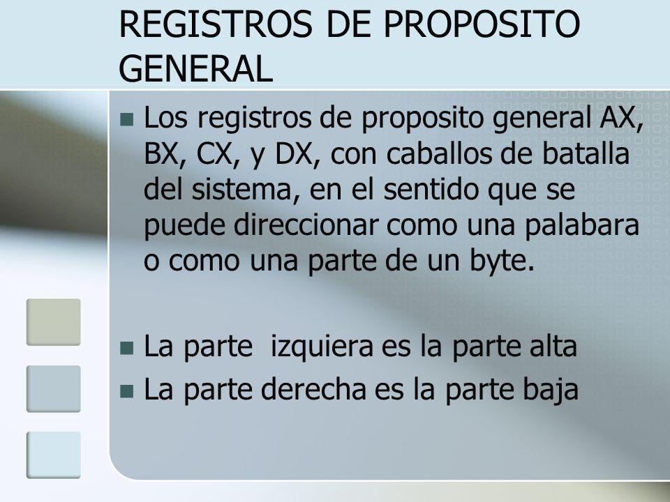 REGISTROS DE PROPOSITO GENERAL