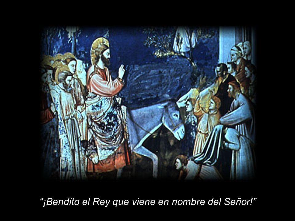 ¡Bendito el Rey que viene en nombre del Señor!
