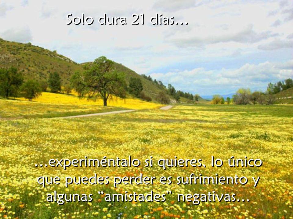 Solo dura 21 días… …experiméntalo si quieres, lo único que puedes perder es sufrimiento y algunas amistades negativas…