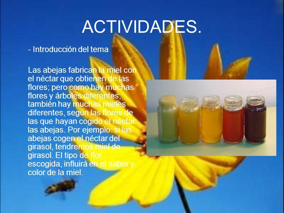 ACTIVIDADES. - Introducción del tema