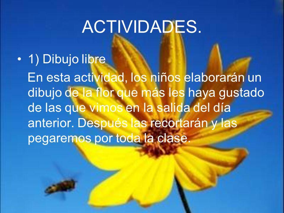 ACTIVIDADES. 1) Dibujo libre