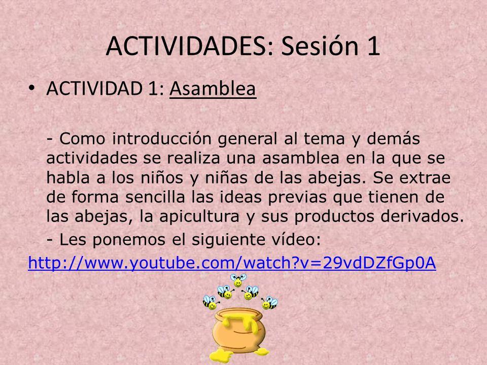 ACTIVIDADES: Sesión 1 ACTIVIDAD 1: Asamblea