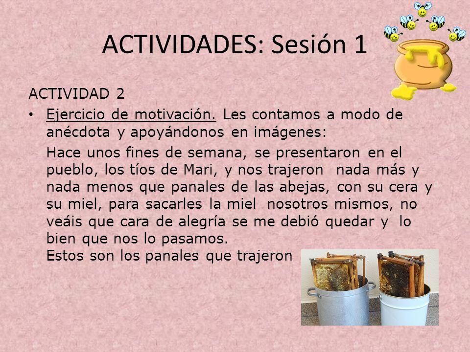 ACTIVIDADES: Sesión 1 ACTIVIDAD 2