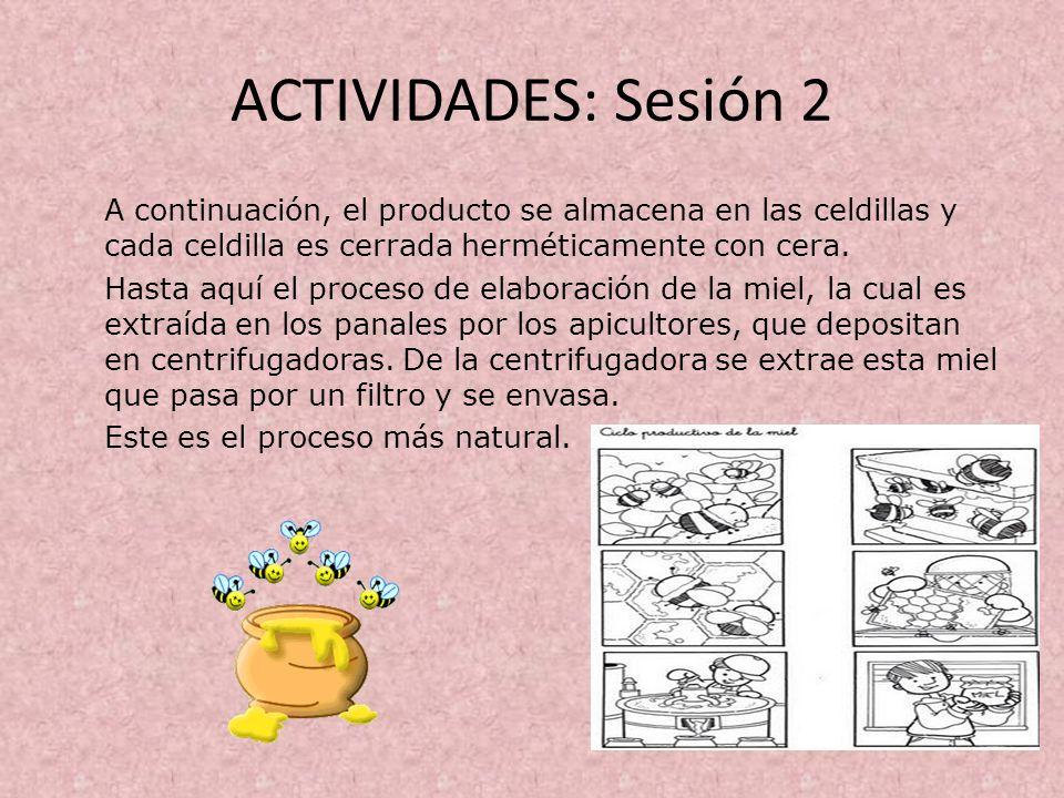 ACTIVIDADES: Sesión 2 A continuación, el producto se almacena en las celdillas y cada celdilla es cerrada herméticamente con cera.