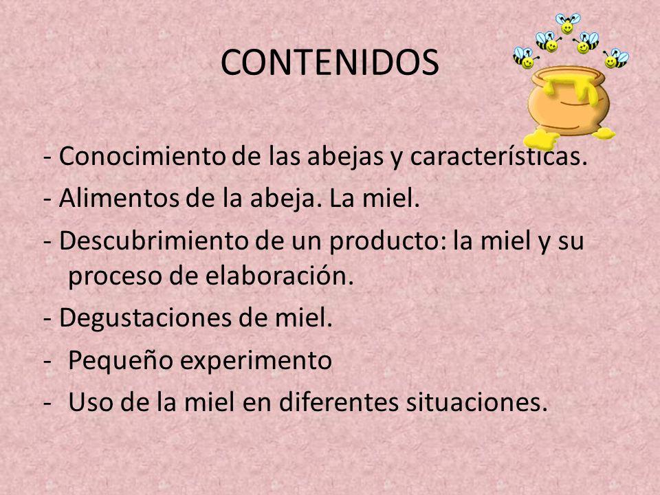CONTENIDOS - Conocimiento de las abejas y características.