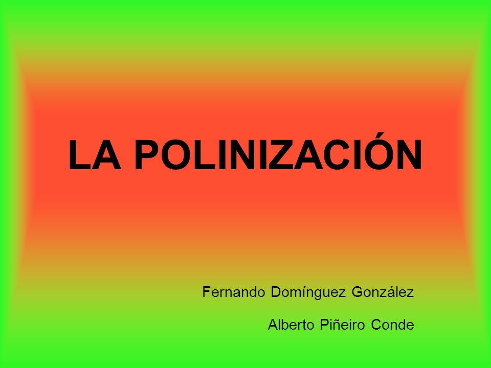 Fernando Domínguez González Alberto Piñeiro Conde