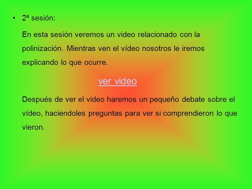 2ª sesión:En esta sesión veremos un video relacionado con la polinización. Mientras ven el vídeo nosotros le iremos explicando lo que ocurre.