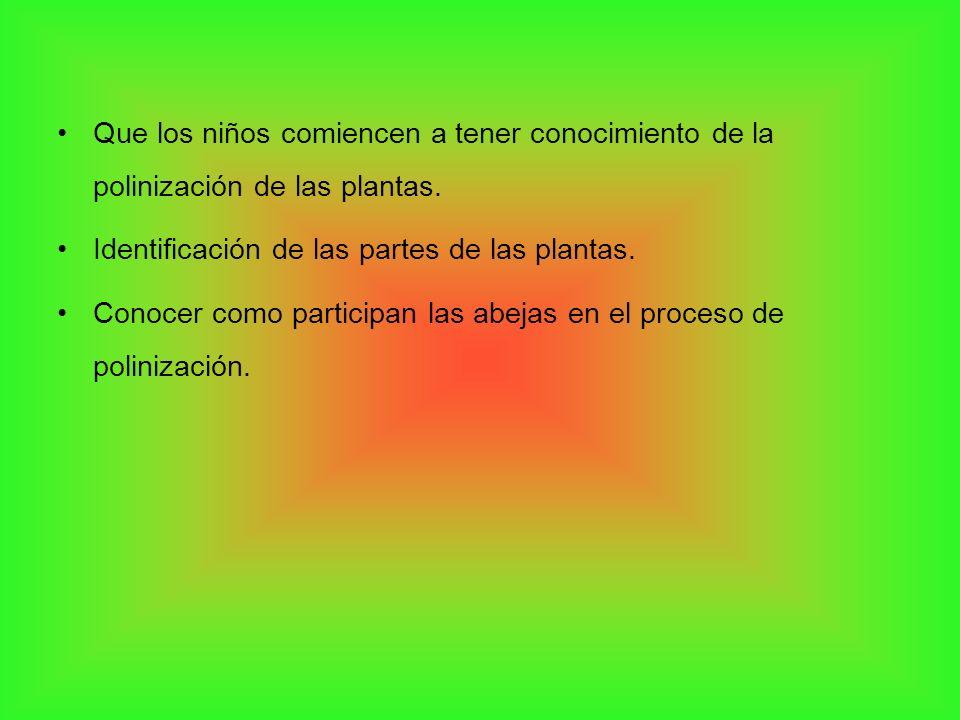 Que los niños comiencen a tener conocimiento de la polinización de las plantas.