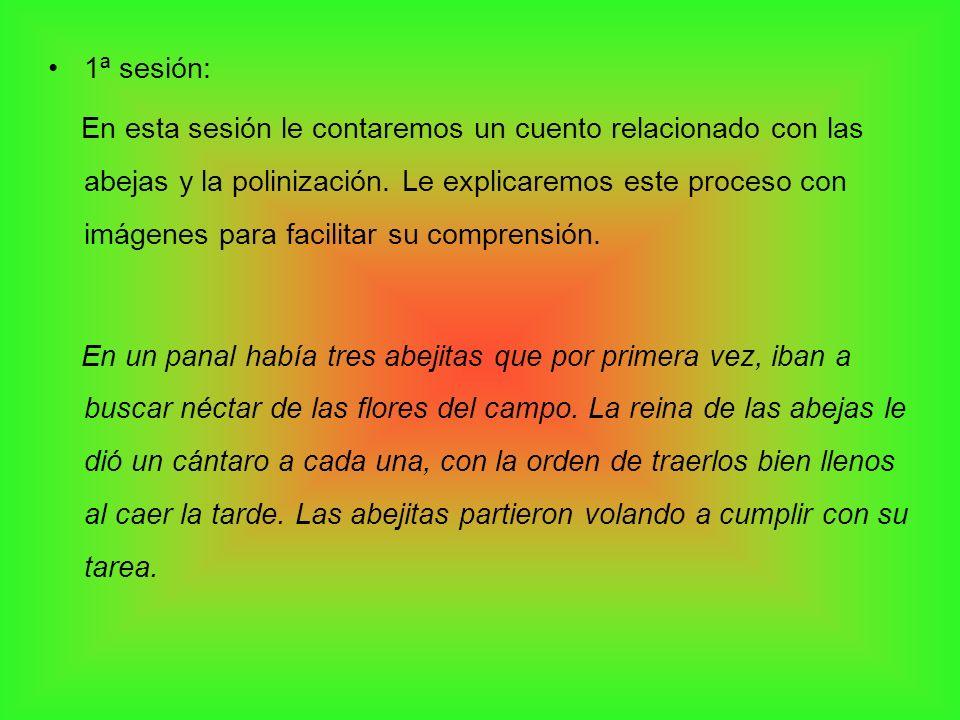 1ª sesión: