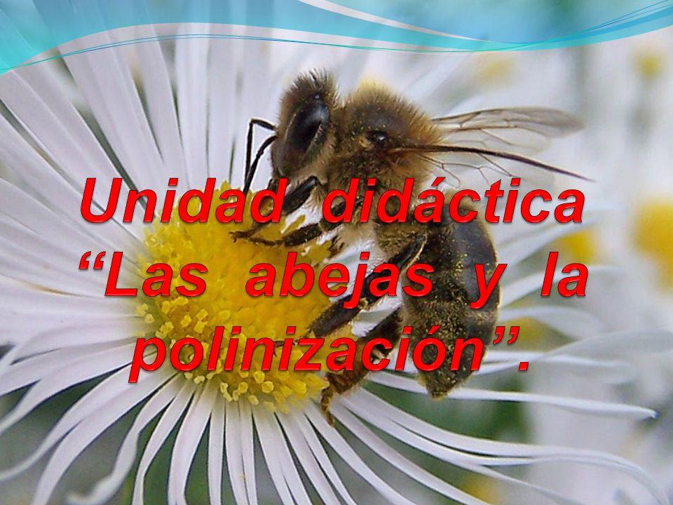 Unidad didáctica Las abejas y la polinización .