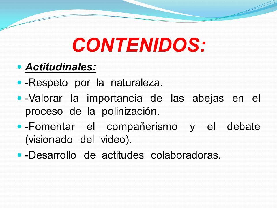 CONTENIDOS: Actitudinales: -Respeto por la naturaleza.