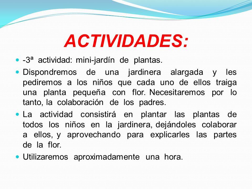 ACTIVIDADES: -3ª actividad: mini-jardín de plantas.