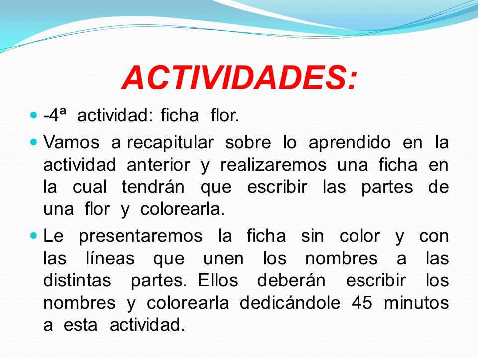ACTIVIDADES: -4ª actividad: ficha flor.