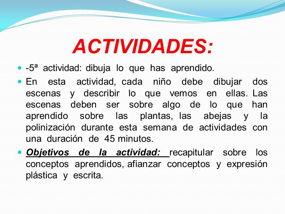 ACTIVIDADES: -5ª actividad: dibuja lo que has aprendido.