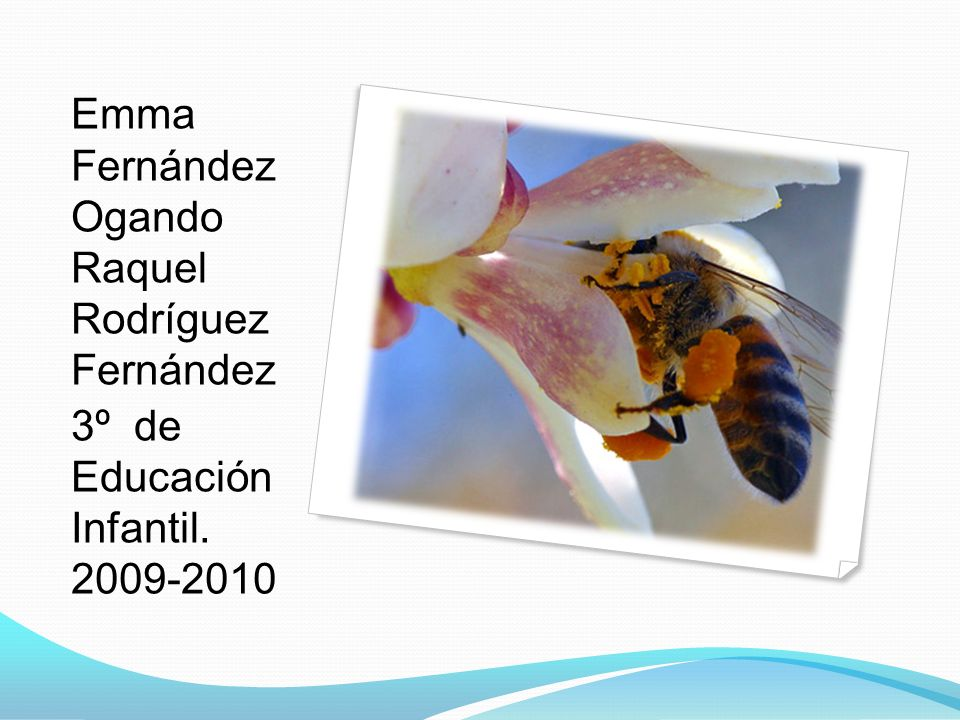 Emma Fernández Ogando Raquel Rodríguez Fernández