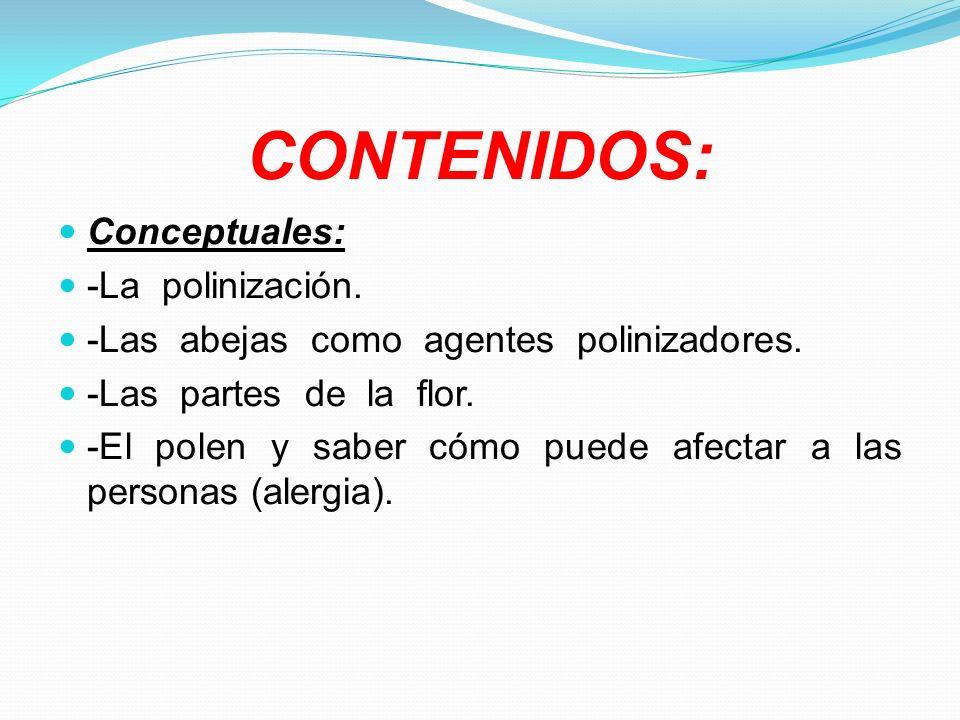 CONTENIDOS: Conceptuales: -La polinización.