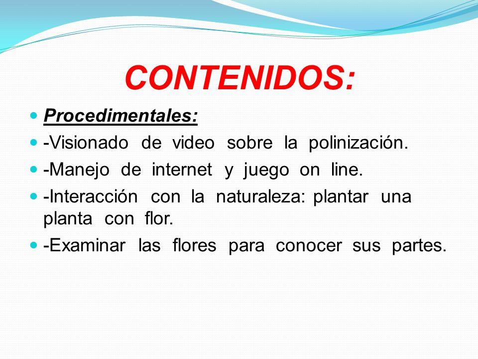 CONTENIDOS: Procedimentales: