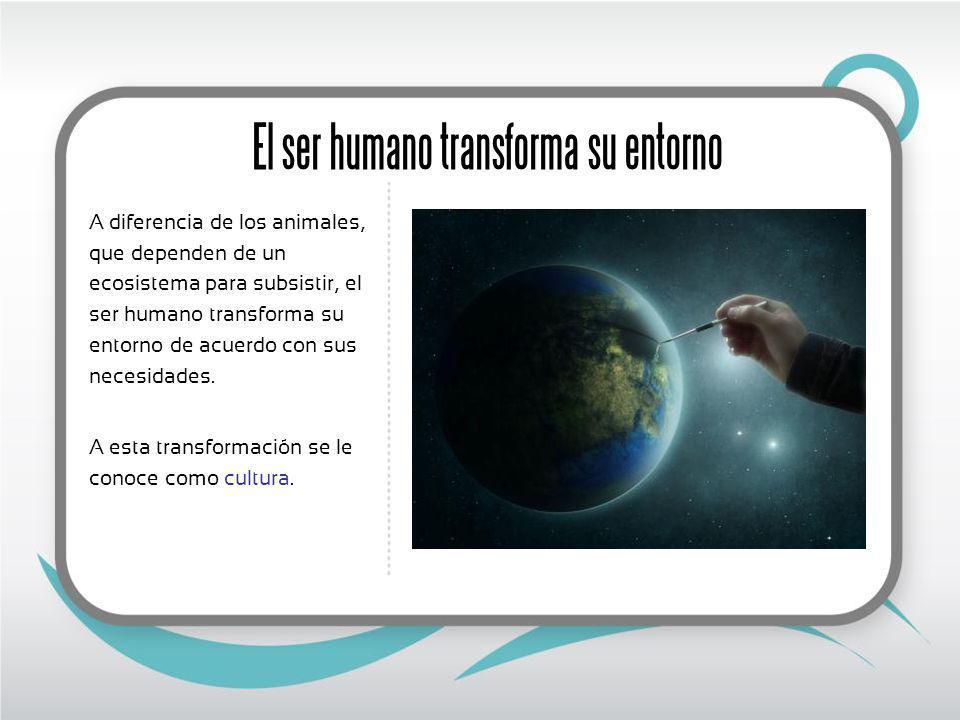 El ser humano transforma su entorno