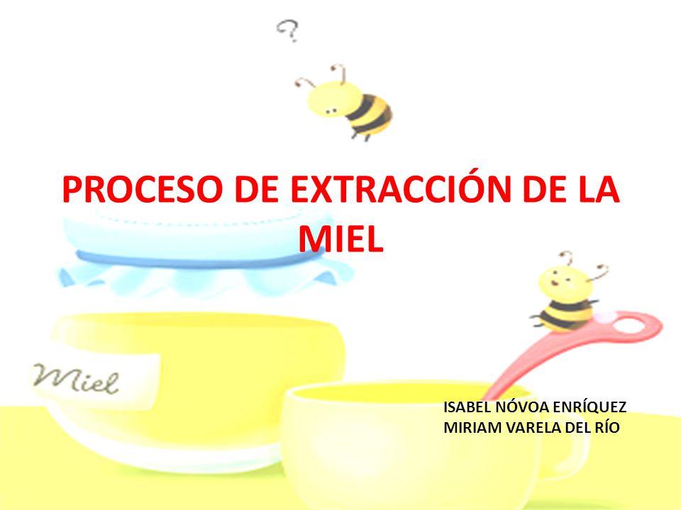 PROCESO DE EXTRACCIÓN DE LA MIEL
