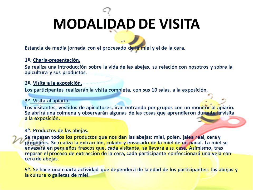MODALIDAD DE VISITA 1º. Charla-presentación.