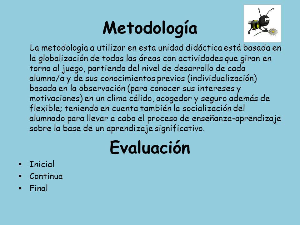 Metodología Evaluación