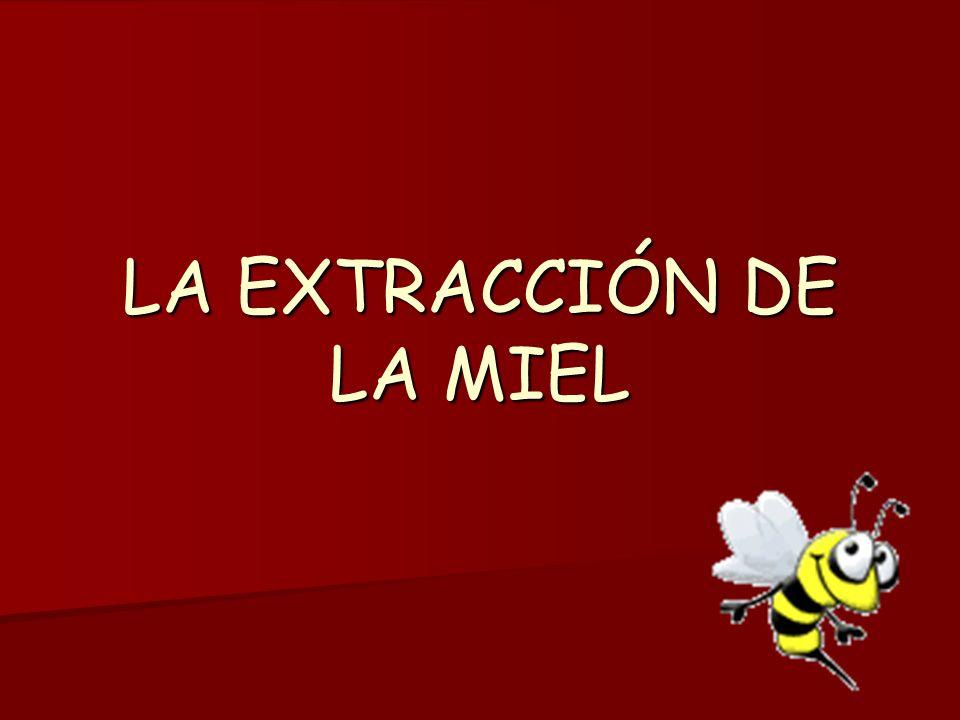 LA EXTRACCIÓN DE LA MIEL