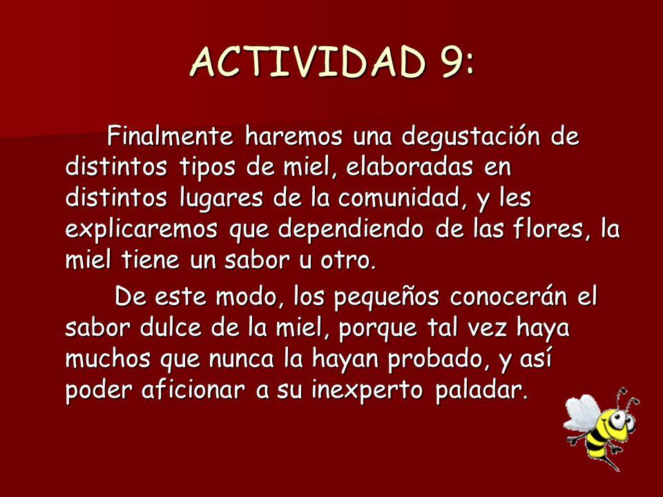 ACTIVIDAD 9: