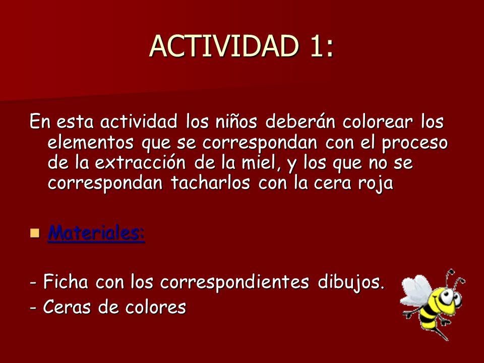 ACTIVIDAD 1: