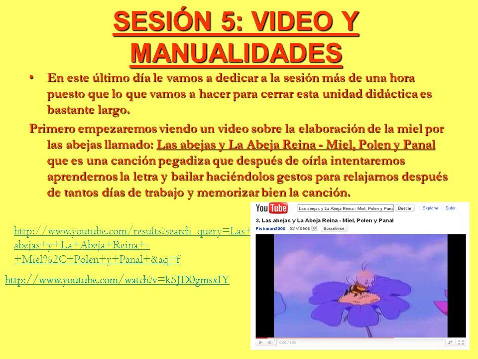 SESIÓN 5: VIDEO Y MANUALIDADES