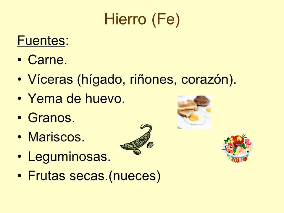 Hierro (Fe) Fuentes: Carne. Víceras (hígado, riñones, corazón).