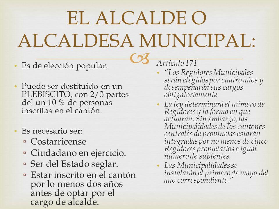 EL ALCALDE O ALCALDESA MUNICIPAL: