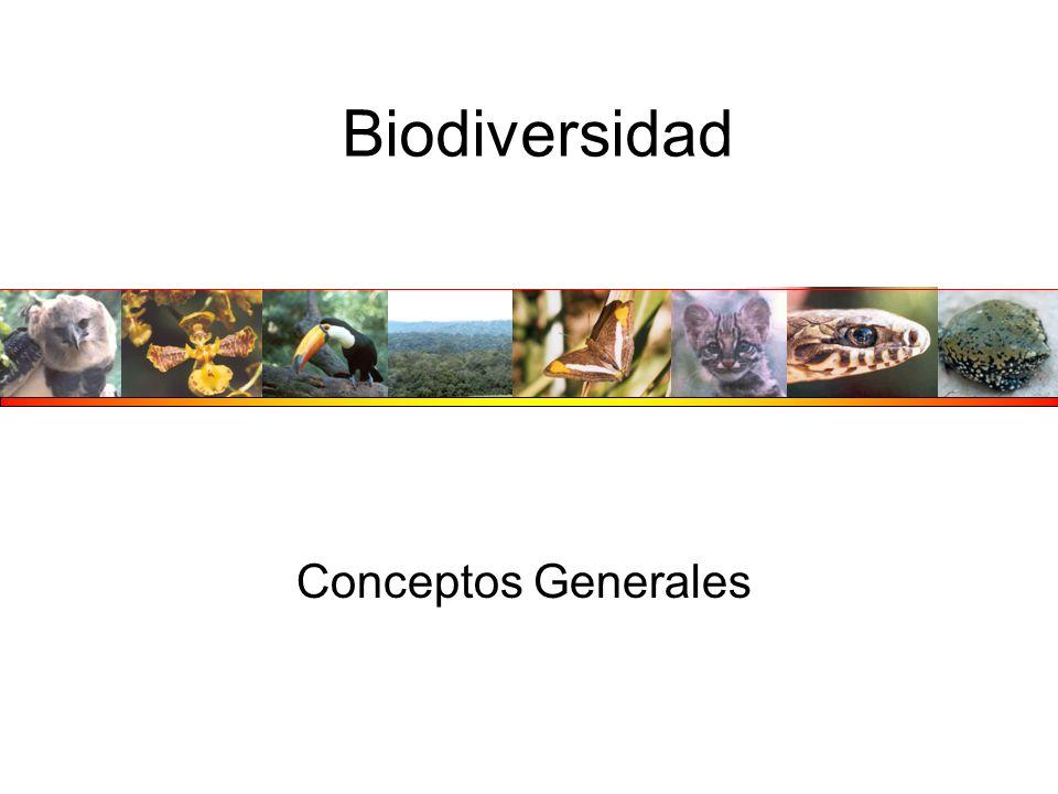 Biodiversidad Conceptos Generales