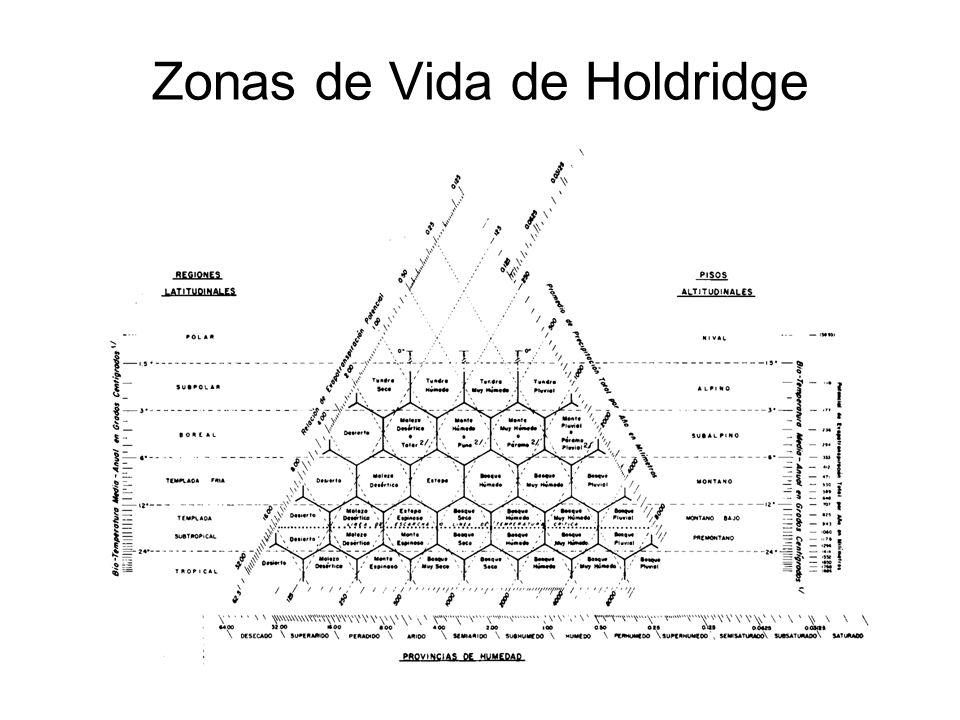 Zonas de Vida de Holdridge