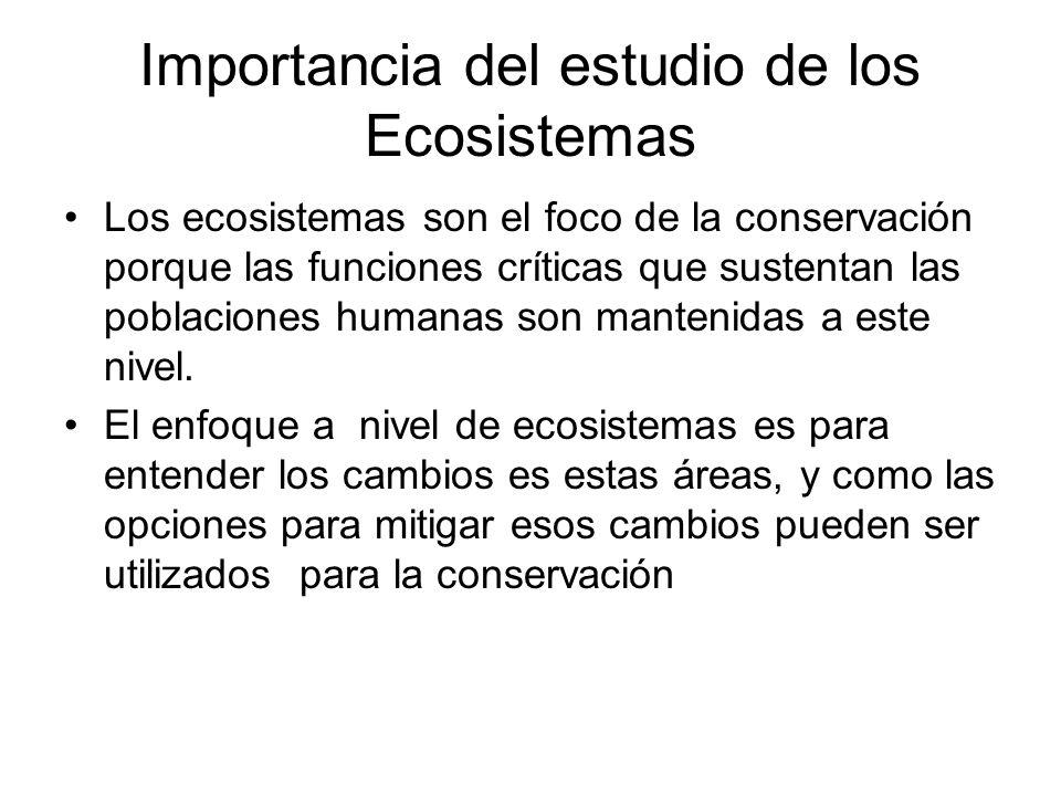 Importancia del estudio de los Ecosistemas