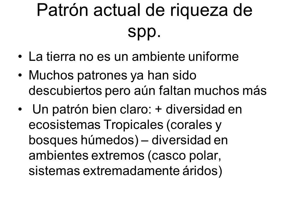 Patrón actual de riqueza de spp.