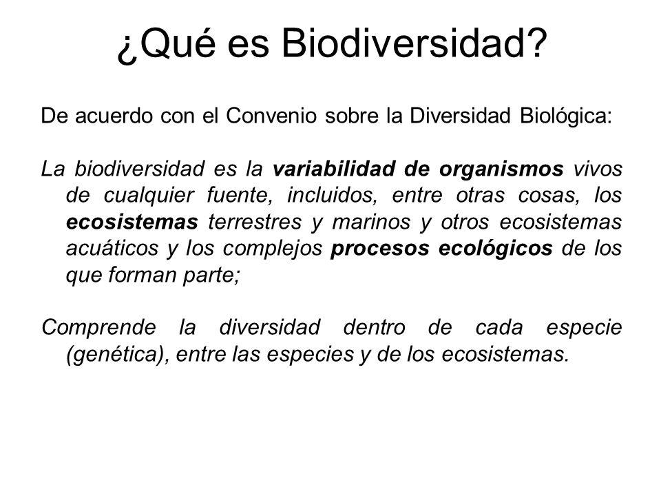 ¿Qué es Biodiversidad De acuerdo con el Convenio sobre la Diversidad Biológica: